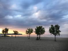 Strand og trær i solnedgang